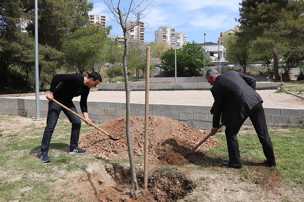 Sadnjom stabala fafarinke u Rasadniku obilježen Dan planeta Zemlje